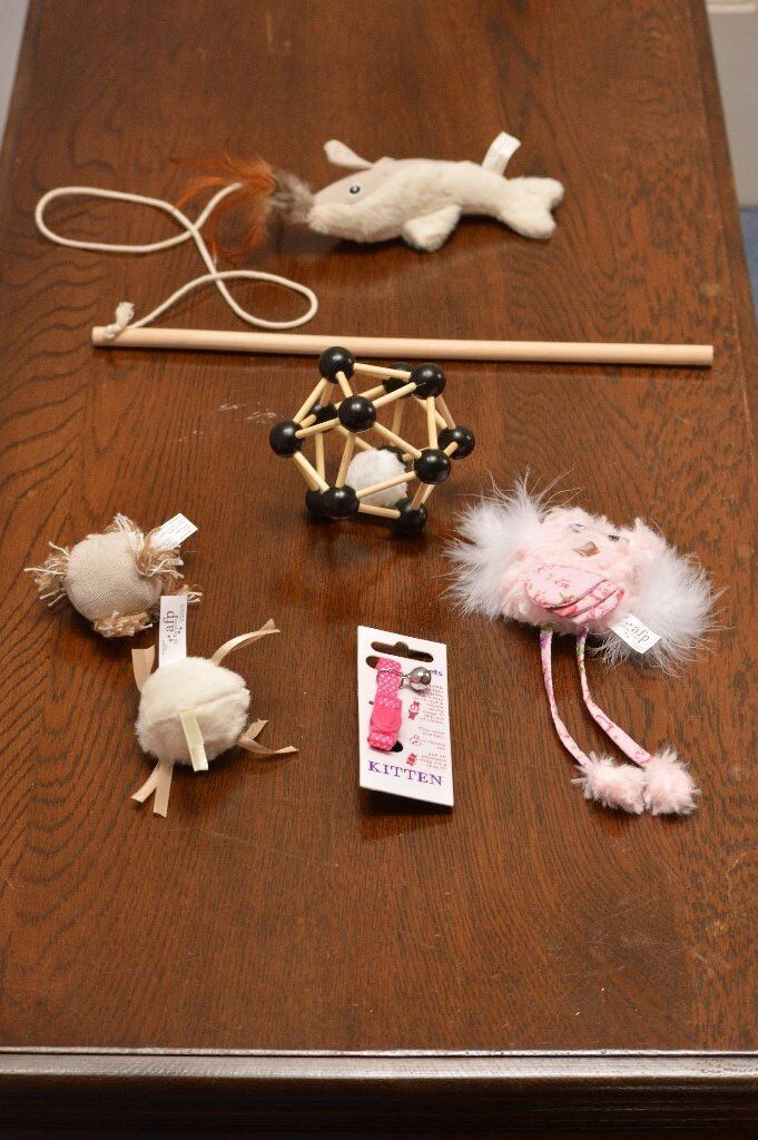 Assorted items for your cat/kitten (all unused)