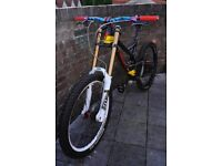 Specialized S-Works Carbon Troy Lee Designs Demo 8 Custom Build Downhill Bike
