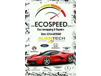 Ecospeed. Ecu remap, recovery, repairs & cloning. DPF & EGR X. DTC's. Remapping