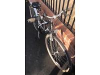 Women's Raleigh P2000 Alu Hybrid / Tourer Bike