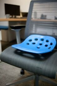 Backjoy Back Support for desk chair