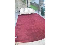 WINE COLOURED CARPET