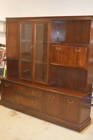 Mahogany Display and Storage Unit / Cabinet / Sideboard