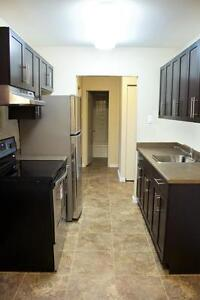 You Have Found Your New Home! 1 BDRM SUITE - 930/MONTH!