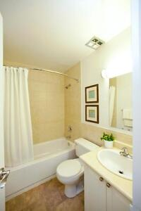 GREAT 2 Bedroom PENTHOUSE for Rent! Sarnia Sarnia Area image 3