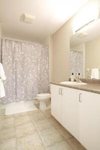 UWO Student Apts for $531/person! Parking & Internet Included London Ontario image 17