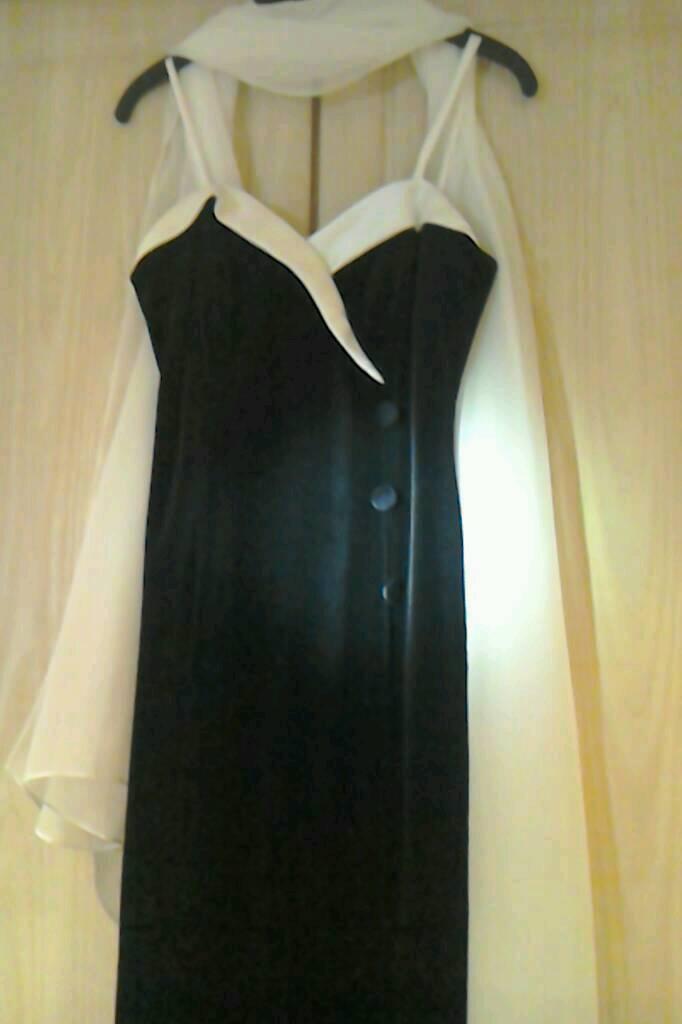 Windsmoor Designer Dress