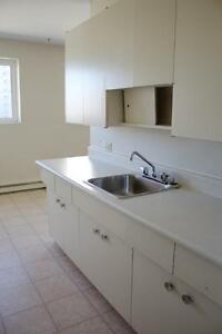 Spacious 1 bedroom apartment located in St. Vital