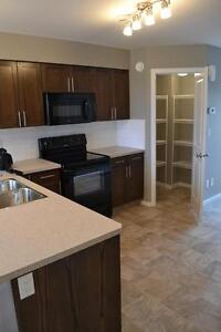 Brand New 2 and 3 Bedroom Townhomes