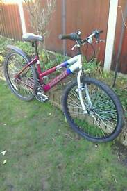 Ladies sports bike collection near Norwich