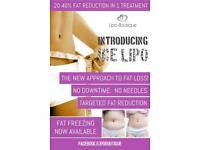 Fat freezing and other non invasive fat loss treatments.