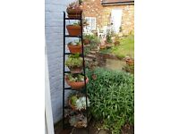 Seven Tier Iron Stand With Plants