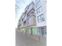 Two Bedroom Property with Balcony in Chiswick