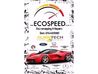 Ecospeed. Ecu remap, recovery, repairs & cloning. DPF & EGR remove and delete. DTC check & delete