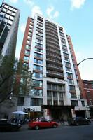 Fully furnished 2 bedroom, amazing building,downtown Montreal