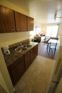 FURNISHED 2 Bedroom, Awesome Location. The Woods