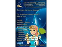 Domestic cleaners , oven cleaning , ironing service