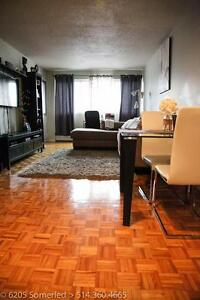 One Bedroom Apartment (3.5) (6205 Somerled (NDG))