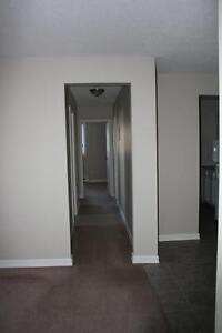 Free Month Rent in Secure Apartment Building in Pleasantville! St. John's Newfoundland image 6