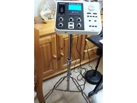 ROLAND VIMA JM-5, MODULE, PLAYER + STAND, USB STICK ALL LEADS