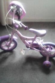 Disney Fairies Bike plus Safety Helmet
