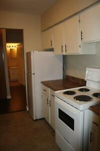 Free Month Rent in Grenfell Court and Columbus Terrace!! St. John's Newfoundland image 6