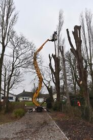 17 Meter narrow access Cherry picker & operator for hire