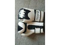 Vehement vegan-friendly boxing gloves