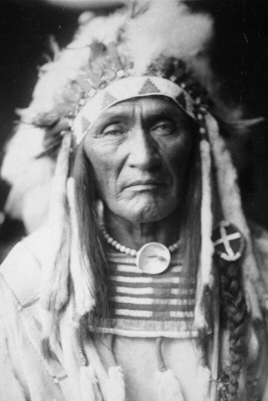 New 5x7 Native American Photo: Young Hairy Wolf, Apsaroka Indian - Crow Nation