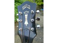 Guild D50 NT 1981 (Bluegrass) LR Baggs p/u + Case (real vintage relic)