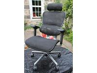 Ergohuman Mesh Office Chair with Headrest - Office Chair