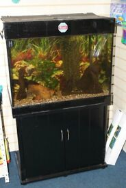 Fish Tank Large 240ltr