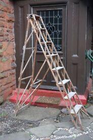Hatherley Lattistep patent wooden stepladder