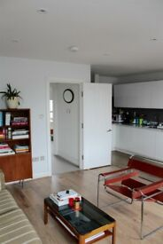 Looking for a new flatmate to share a large split-level flat in Tufnell Park