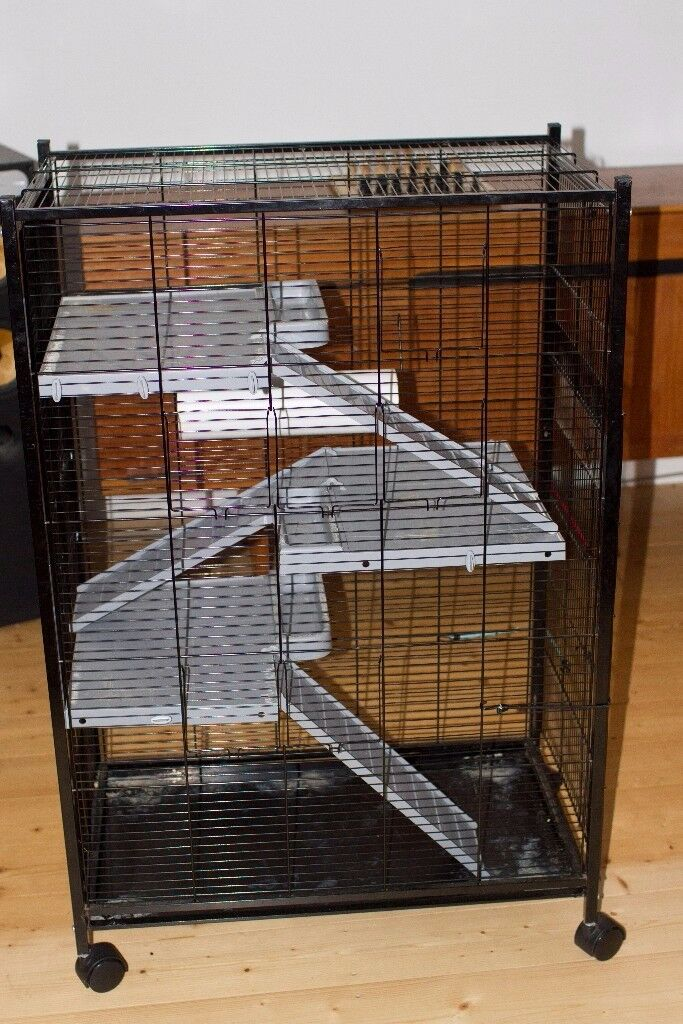 Small Animals / Rodents Cage £40 (original price £100)
