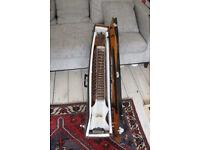 Dilruba - Indian violin