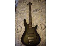 Ibanez 5 string bass - SR305EB
