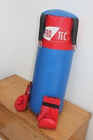 Pro Tech Punch Bag with boxing gloves