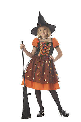Classic Pretty Pumpkin Witch Girls Child Costume