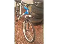 20 inch mountain bike with mud guards good condition £70 blue and white