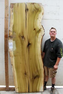 Natural Raw Wood Slab Bar Poplar Tulip Custom Live Edge Countertop 6613s3