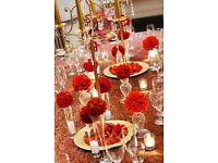 *Wedding and Party Centrepieces/Styling* - Candelabras, Wisteria trees and Flower balls to HIRE!