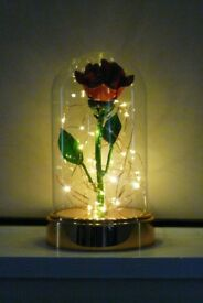 EVERLASTING SOLID STEEL ROSE IN GLASS DOME WITH LIGHTS ( HAND CRAFTED & PAINTED )
