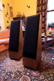 Thiel Coherentsource loudspeakers model CS1.2