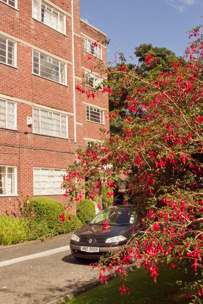 Jesmond, Newcastle upon Tyne, Studio flat in popular block. Ground floor with good access £485.00pcm