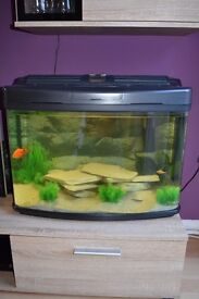 Fish tank with cupboard and 12 fish. All included.