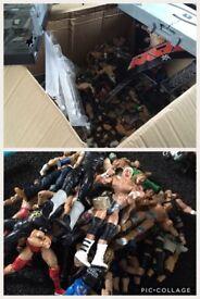 Wrestling joblot