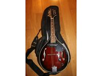 Acoustic - Electric Bluegrass Mandolin with case