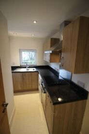 Immaculate 1 bedroom flat, newly refurbished, Gas Central Heating