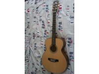 FRESHMAN TOP QUALITY ACOUSTIC GUITAR WITH GOLD HARDWEAR BRAND NEW CONDITION